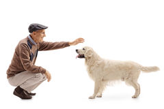 Elderly man playing with his dog Royalty Free Stock Images