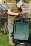 Elderly man recycling weeds into bin. An elderly man placing weeds into a recycling bin in a backyard. The weeds will be taken away and made into compost royalty free stock image