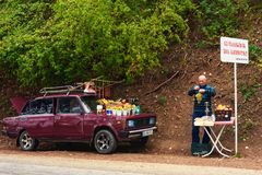 The elderly man on a roadside trades in fruit from the car royalty free stock photos