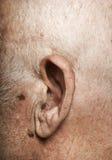 Elderly man's ear Royalty Free Stock Photo