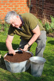 Elderly man sowing seeds in container. An elderly man sowing carrot seeds in a container of compost in a backyard Royalty Free Stock Image