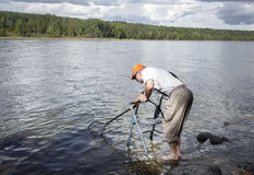 Elderly man standing in water with a walker and his fishing net trying to scoop up the fish. Stock Images