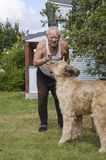 Elderly man talking with a dog Royalty Free Stock Images