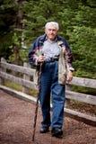Elderly man Walking. An elderly man walking on a path through the forest stock image