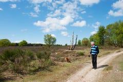 Elderly man is walking his dog Stock Image
