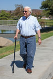 Elderly man walks with a cane. Elderly man is using a cane and walks down a sidewalk in a park.  He has white hair and is wearing blue jeans and sunglasses Royalty Free Stock Image