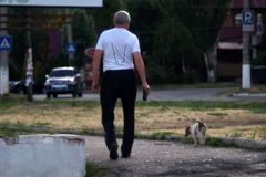 An elderly man walks with a dog on the road royalty free stock photos