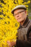 Elderly man working in garden Royalty Free Stock Photography