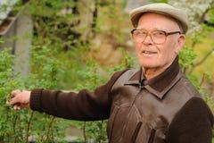 Elderly man working in garden Stock Photo