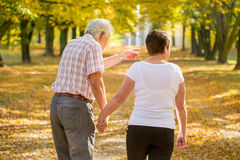 Elderly marriage strolling in park royalty free stock images