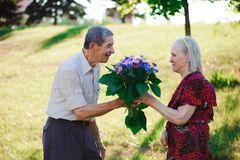 An elderly man of 80 years old gives flowers to his wife in a summer park stock photos