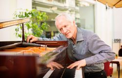 Elderly music instrument technician tuning a piano keyboard. Elderly music instrument technician tuning piano keyboard. Musician checking chords, sound pitch Royalty Free Stock Image