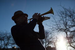 An elderly musician plays in the street on a trumpet. In spring day Royalty Free Stock Photo