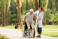 The doctor helps an aged patient to get on their feet. An elderly patient took crutches and got up from a wheelchair with the help of a female doctor Royalty Free Stock Images