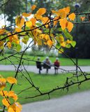 Elderly people in autumn park Royalty Free Stock Photo