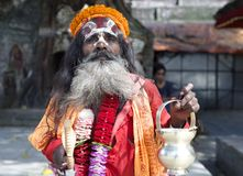Elderly Sadhu Stock Image