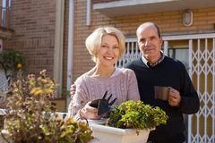 Elderly spouses in patio Stock Photos
