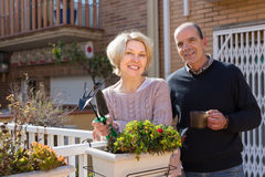 Elderly spouses in patio. Positive smiling elderly women with horticultural sundry and aged men drinking tea in patio stock photo