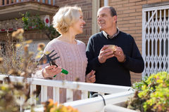 Elderly spouses in patio. Smiling elderly women with horticultural sundry and aged men drinking tea in patio stock images