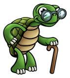 Elderly Tortoise Cartoon Character Royalty Free Stock Photography