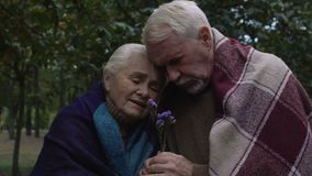 Elderly upset couple wrapped in plaids cuddling holding flower in hands, grief