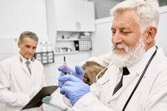 Elderly vet doctor holding needle for injection. royalty free stock photos