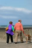 Elderly Walkers. Elderly couple out for a walk with their dog on a beach promenade, with the sea, out of focus, to the rear Royalty Free Stock Photography