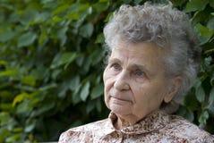 Elderly woman. Portrait of the elderly woman outdoors Stock Image