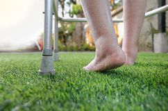 Elderly woman bare swollen feet on grass with walker. At home royalty free stock image