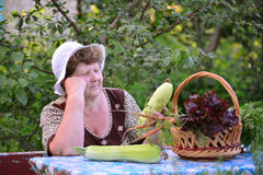 Elderly woman with  basket of vegetables sitting at the table Royalty Free Stock Photo