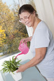 Elderly woman caring for potted plants. 