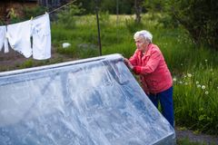 An elderly woman closes the greenhouse near her house. Stock Images