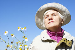 An elderly woman with daisies. In autumn Royalty Free Stock Photos