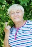 Elderly woman in garden Stock Images