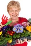 Elderly woman is gardening Stock Images