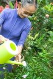 Elderly woman gardening stock photo