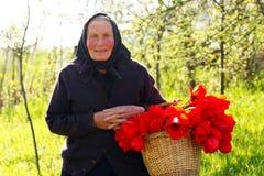 Elderly woman happy Stock Photo