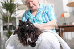 Elderly woman with her pet Stock Photos