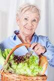 Elderly woman holding basket Royalty Free Stock Images