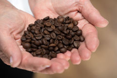 Elderly woman holding coffee beans Royalty Free Stock Photo