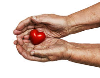 Elderly woman keeping red heart in her palms Stock Image