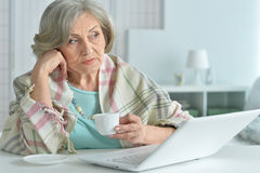 Elderly woman with a laptop Stock Photos