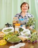 Elderly woman with medicinal herbs Stock Photos