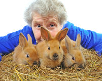 Elderly woman near rabbit Royalty Free Stock Images