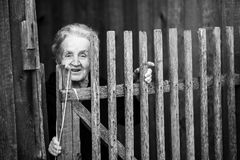 An elderly woman near the wooden fence. Stock Image