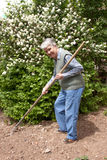 Elderly woman with rakes in hands. On lot land Stock Photography