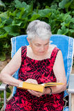 Elderly woman reads a book Stock Images