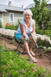 Elderly woman removes the weeds in the garden Royalty Free Stock Photo