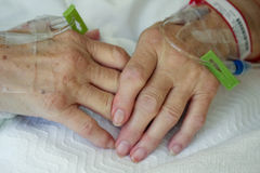 Elderly woman's hands Stock Images