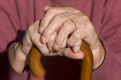 Elderly Woman's Hands Stock Image